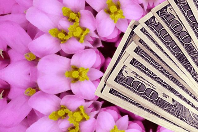dinero-manifestacion