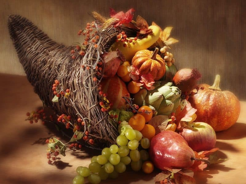 thanksgiving_cornucopia